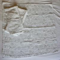 Tetra pelene iz Ikee
